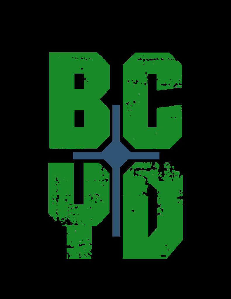 WEB-2_BCYD